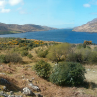 Killary Harbour is a 16km long fjord, at the frontier between counties Galway and Mayo (in Ireland). by El Comandante is licensed under PDM